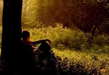 Canção da tarde no campo