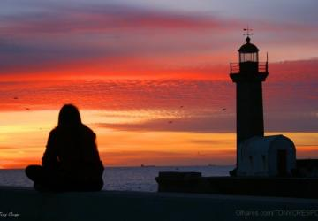 CINZAS: Páscoa no horizonte