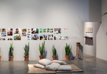 31ª Bienal de São Paulo no Palácio das Artes