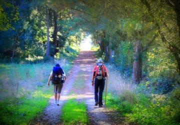 A viagem, síntese da vida cristã