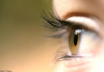 Novos Olhos para novos Tempos