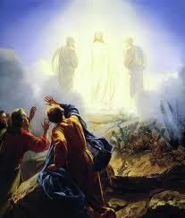 A transfiguração nos humaniza