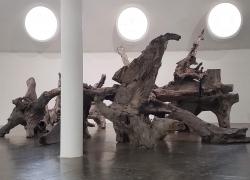 Raiz - Ai Weiwei